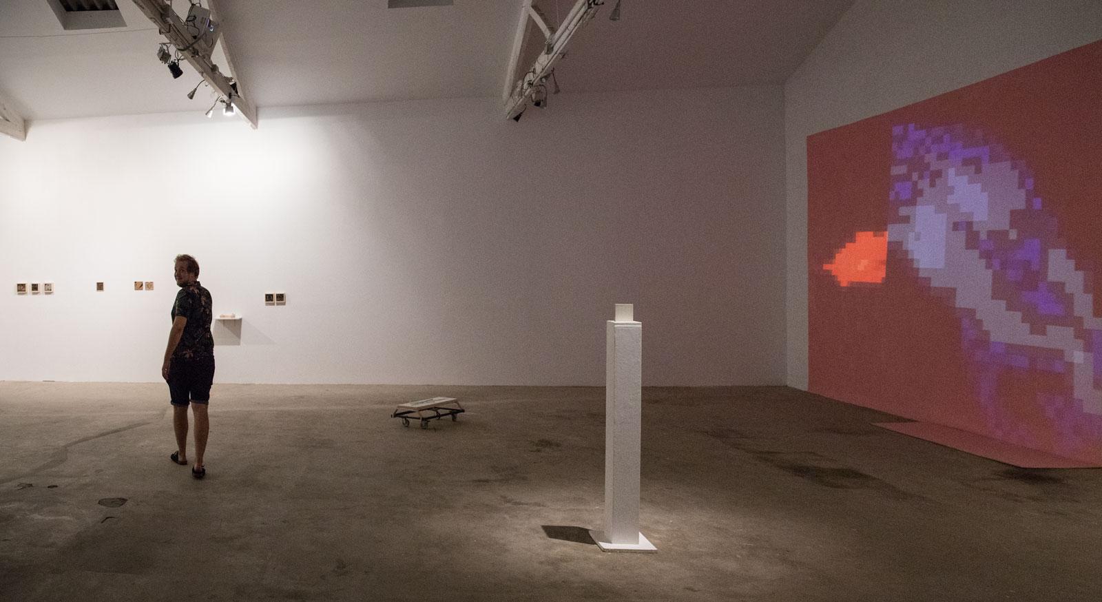 Georg_pinteritsch_exhibition-view-3_espronceda